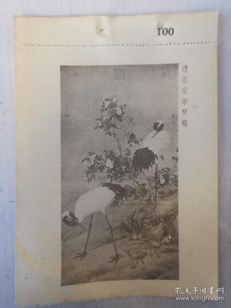 民国珂罗版画 清郎世寕双鹤