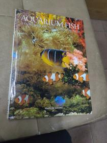 《AQUARIUM   FISH A PORTRAIT  OF  THE  ANIMAL      WORLD》精装8开本