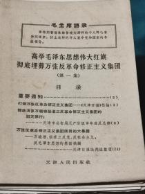 【红书-60年代】高举毛泽东思想伟大红旗 彻底埋葬万张反革命修正主义集团(第一集)