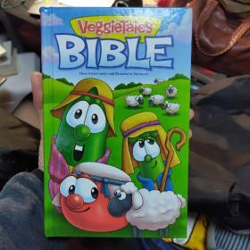 儿童圣经 NIV版本