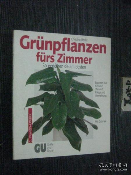 德文版 Grünpflanzen fürs Zimmer 房间里的绿色植物