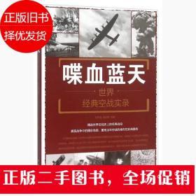喋血蓝天:世界经典空战实录