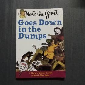 Nate the Great Goes Down in the Dumps 英文原版