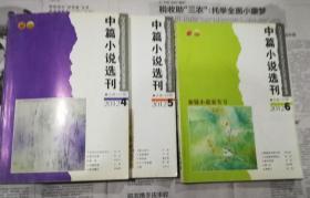 中篇小说选刊 2012年 第4/5/6期 3本合售