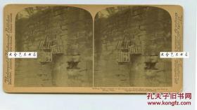 清末民国立体照片---李鸿章大人的警示--悬挂在广州海珠区河南墙上的五颗海盗人头--(血腥请慎入),警告那些无法无天的人
