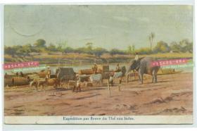 1913年印度茶园生产的茶叶通过河道航运运往世界各地,1913年贴邮票实寄明信片