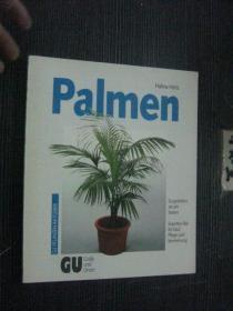 德文版 Palmen 棕榈树