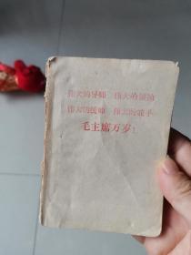 塑料红卫兵日记
