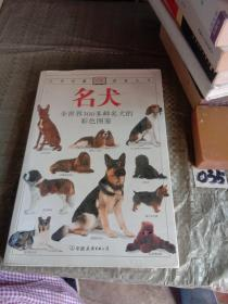 名犬:全世界300多种名犬的彩色图鉴