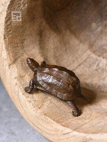金钱铜龟茶宠