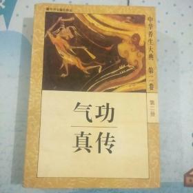 中华养生大典(第二卷 第二册) 气功真传
