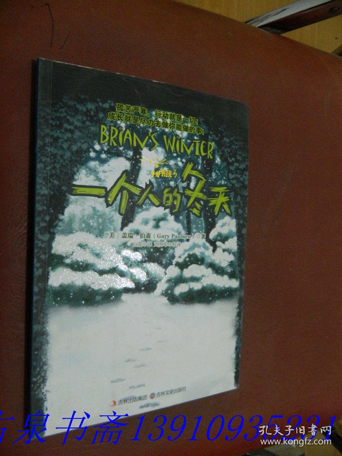 手斧男孩3:一个人的冬天