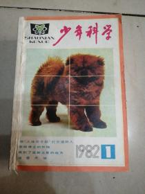 少年科学(1982年1—12合订本)