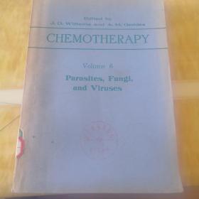 化学疗法(第6卷)寄生虫,真菌,病毒