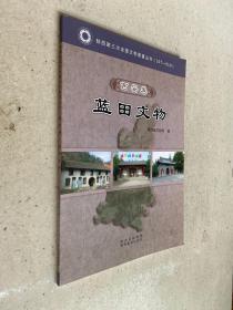 陕西省第三次全国文物普查丛书:西安卷.蓝田文物