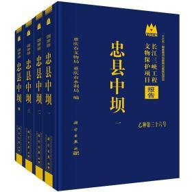 忠县中坝(全4册)