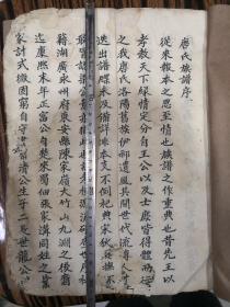 唐氏族谱康熙末年由楚入蜀(大开手抄本45筒子页)