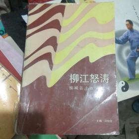 柳江怒涛——柳城县土改回忆录.