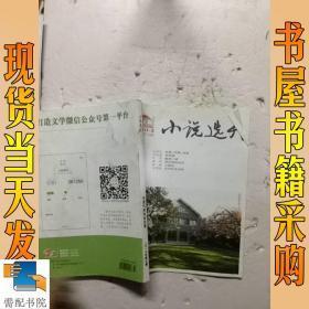 小说选刊         2017     3