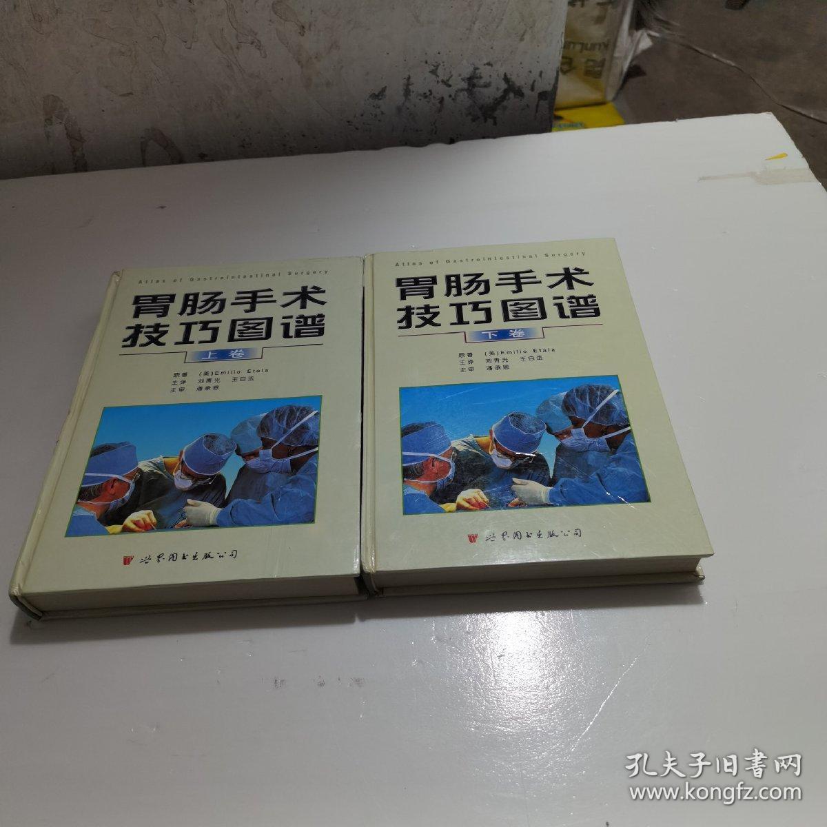 胃肠手术技巧图谱(上下卷)(全二册)  精