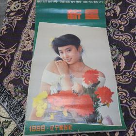 1989年新星挂历(13张全)10,11月掉页了