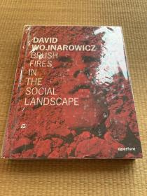 David Wojnarowicz:Brush Fires in theSocial Landscape