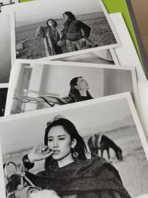 肖全,中国最好人像摄影家,亲笔签名杨丽萍写真照片集明信片一套12张, 全新,布鲁姆画廊出品,数量非常少
