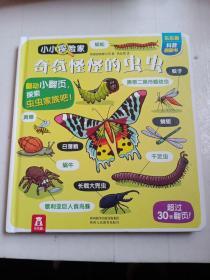 奇奇怪怪的虫虫-小小探险家