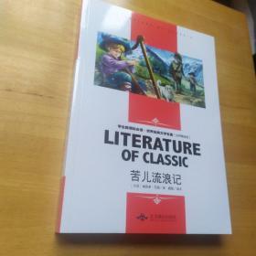 苦儿流浪记  学生新课标必读·世界经典文学名著 : 名师精读版 正版书