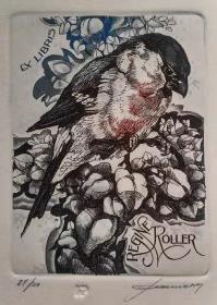 比利时 帕维尔 Hedwig Pauwels 版画藏书票原作4精品收藏