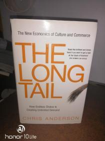 THE LONG TAIL    英文原版、长尾理论
