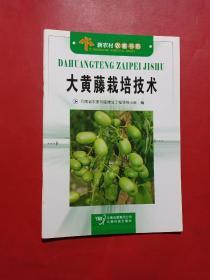 大黄藤栽培技术