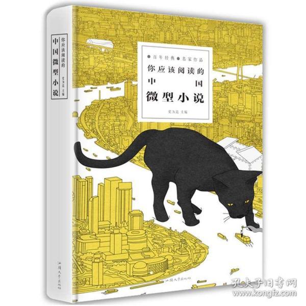 你应该阅读的中国微型小说 小说畅销书 2016年中国微型小说排行榜