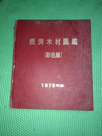 硬精装12开《经济木材图鉴》(彩色版)厚重  书背边角裂   64年初版