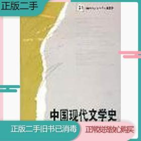 中国现代文学史凌宇湖南师范大学出版社9787810816625