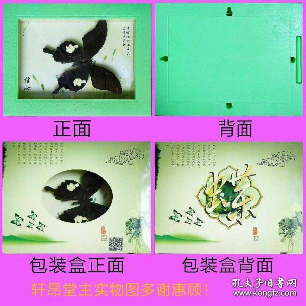 蝴蝶标本:玉斑凤蝶(尺寸为盒子。只盒子有磨损,见图)