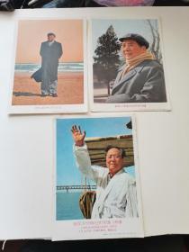 老明信片三张,毛主席畅游长江北戴河围巾,13.7厘米,上海人民