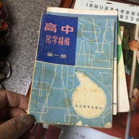 高中化学精编 第一册