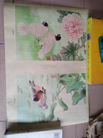 年画,鸽子牡丹,鸳鸯水洋36X53厘米
