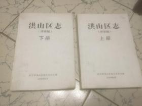 洪山区志 (2008年评审稿) 上 下