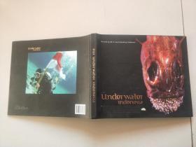 OUR  Underwater  Indonesta【见图】