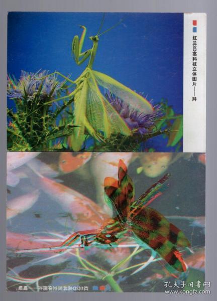 红兰3D高科技立体图片【10张】15x10.4cm。年代不详