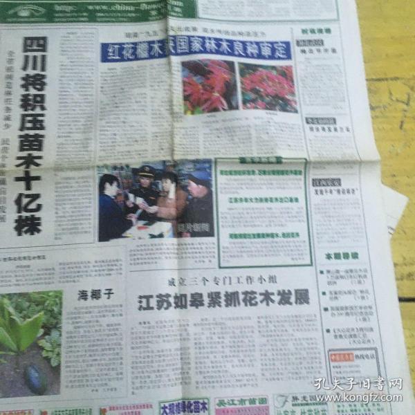 中国花卉报2004年2月21日,四川将积压苗木十亿株。