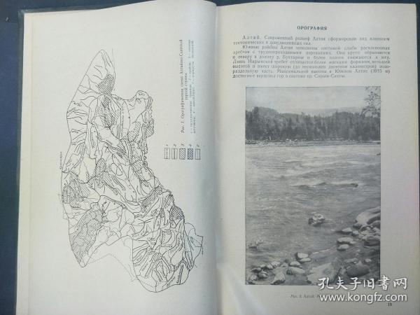阿尔泰落彦山区的树木区系