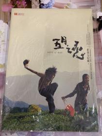 刘亦菲 五月之恋 影像全记录 正版 台版出品