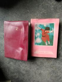 90年代日记本2本合售如图