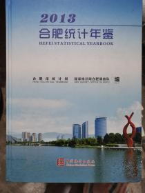 合肥统计年鉴(2013)