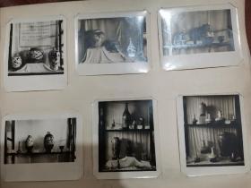 82年中国瓷展原始照片(77张)