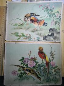 戈相岚作,四季花二,三,共2张合售(16开)
