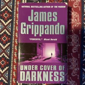 【英文原版小说】UNDER COVER OF DARKNESS by James Grippando